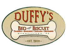 Duffy's Bed and Biscuit